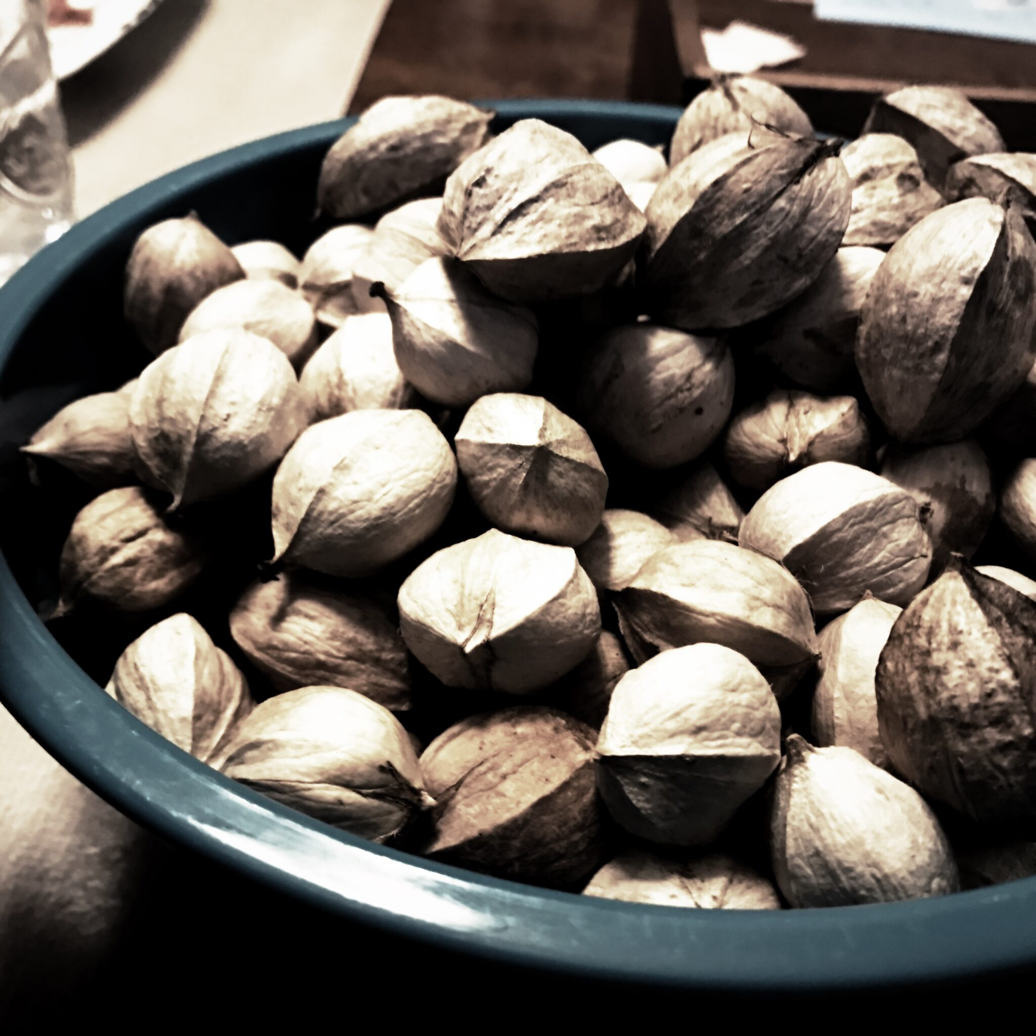 """What Am I, A Fucking Pioneer?"" (Or, My Descent Into Forager's Madness At The Behest Of Sinister And Seductive Hickory Nuts)"