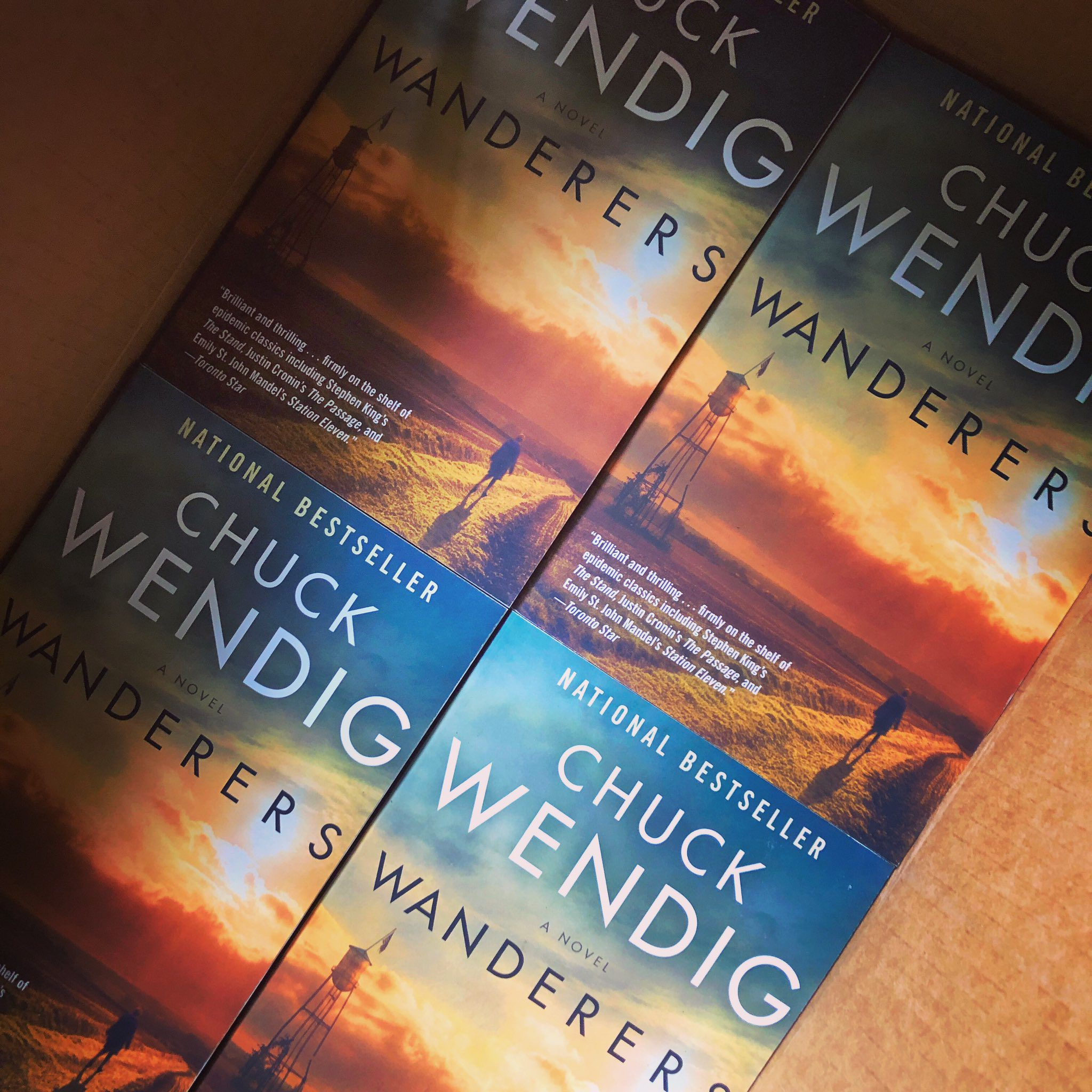 Wanderers: Now Out In Paperback